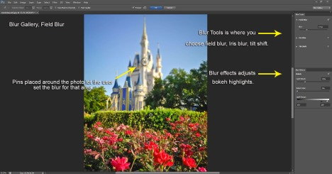 Blur Gallery Interface